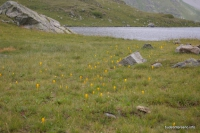 Одно из озёр Загеданский хребет Пятиозёрье