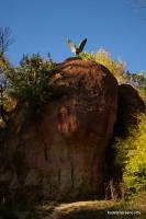 Красные камни Кисловодский курортный парк Кисловодский парк