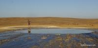 Грязевой вулкан на Керченском полуострове Тарханы