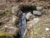 Минеральные источники Солёновские источники Минеральная вода на реке Солёная
