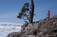 Скалы у Азишского перевала Вид на Лагонакский хребет Азишский перевал, скалы
