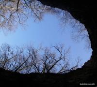 Вид из входа в пещеру на Гунькиной балке Гунькина балка пещера