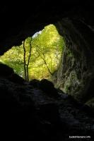 Выход из пещеры Зубащенко пещера