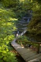 Оборудованная тропа к водопадам Змейковские водопады Деревянный мостик Дикарька