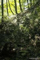 Старые ступеньки в обход водопада на Мацесте Мацестинские водопады