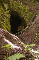 Вход в пещеру Самородную пещера Самородная  пещеры