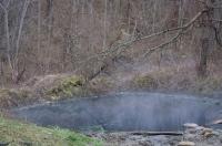 Болото с горячей минеральной водой дикие источники Гуамка