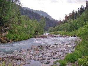 Река Большая Лаба