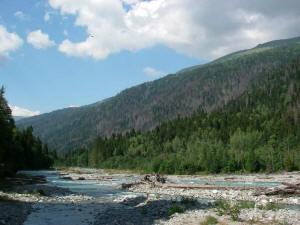 Река Большая Лаба ниже слияния с Бурной